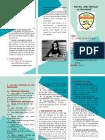 TRÍPTICO-diario de Ana francko