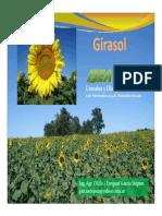 Introduccn a Girasol