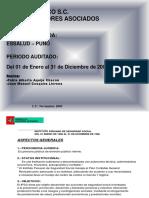3.- Auditoria Ipss