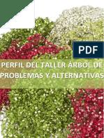 Perfil Del Taller 2017 1
