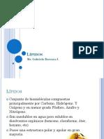 Clase - Lipidos