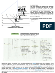hombre-folsil-filogenia-humana.pptx
