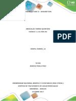 12 Aneidalid Torres Fase II
