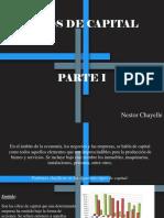 Nestor Chayele - Tipos de Capital, Parte I