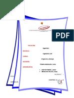 Irrigacion y Drenaje Investigacion Formativa