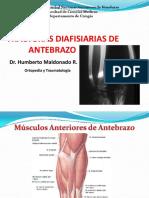 fracturasdiafisiariasdeantebrazo-121130175409-phpapp01