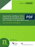 ANATOMIA CARDIACA.pdf