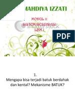 VAYA- lbm 1- modul 11