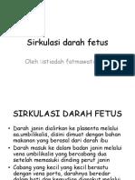 Sirkulasi Darah Fetus