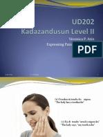 Week 2 UD202 Expressing Pains and Feelings