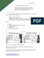 cc48b4678e94ac35fd4701596664f66c.pdf