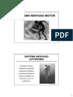 Aula Sistema Nervoso Autonomo
