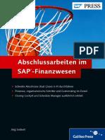 EBook_Abschlussarbeiten Im SAP- Finanzwesen