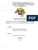 proyecto-de-tesis-passiflora-ansiedad-1-2-1111-(4)