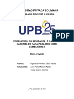 Micro Proyecto Final[276]