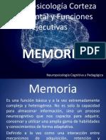 Corteza Prefrontal Memoria y Funciones Ejecutivas