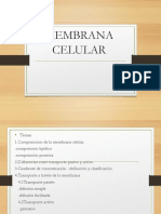 Membrana Celular Seminario1