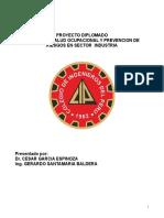 Proyecto Diplomado Seguridad