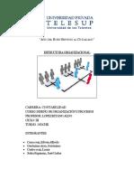 Monografia de Estructura Organizacional