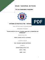 Informe de Practicas Profesionales Erick Zapata