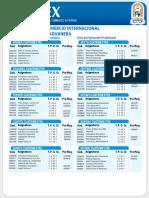 Linc.en Comercio Internacional y Administracion Aduanera