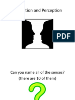 lecturebasicprinciplessensationperception