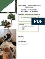 Yogurt Natural de Café (2)