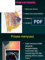 slide ASI.ppt