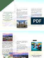 PICAFLOR.doc