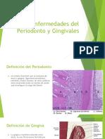 Enfermedades Del Periodonto y Gingivales