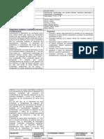 formato_de_planificacion.docx-1.docx