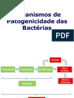 aula_patogenicidade.pdf