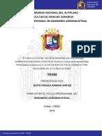 Mamani_Arpasi_Edith_Frigida.pdf