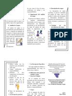 trptico, tesis.docx