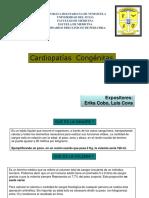 Cardiopatias Patologicas Seminario