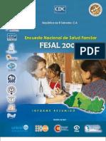 FESAL2008-InformeResumido