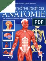 Anatomie neu OCR (1).pdf