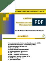 ACUM_CAP4_PHS.pdf
