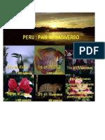 Mega Diversidades Del Perú Imagen