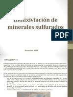 Biolixiviacion Industrial