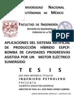 tesis_SAP.pdf