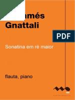 Radamés Gnatalli - Sonatina Em Ré Maior