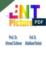 ENT Pictures.pdf