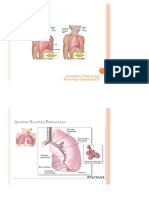 Assistensi Umum Respirasi.pptx