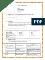 proyecto de aprendizaje 14 elementos.docx