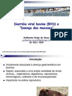 Aula BVD
