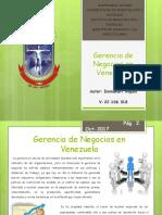 Gerencia de Negocios en Venezuela.pptx
