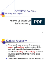 Ch13 Surface Anatomy.ppt