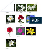 10 Flores Con Concepto