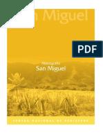 57132535-Monografia-de-SAN-MIGUEL.pdf
